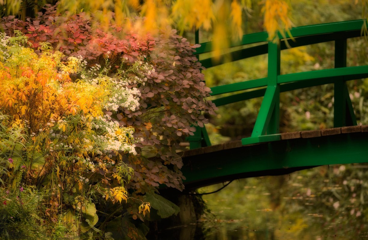 Giverny in the fall - Fikry Botros