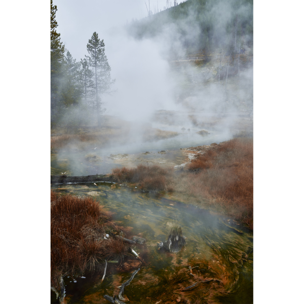 11h18 Yellowstone National Park