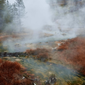 11h18 - Yellowstone National Park Adrien Le Falher