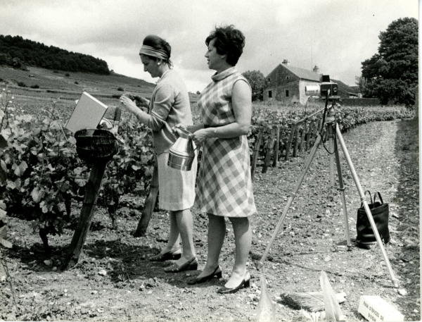Willy Ronis Bourgogne tirage tamponne